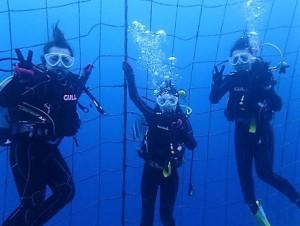沖縄ダイビング,ジンベイザメツアー
