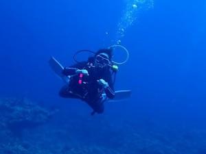 沖縄ダイビング慶良間諸島