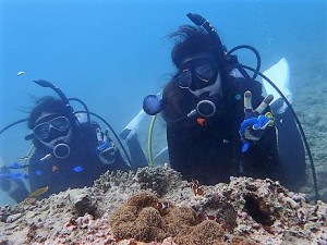 沖縄ダイビングライセンス講習