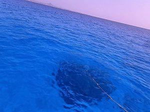 沖縄ファンダイビング水納島
