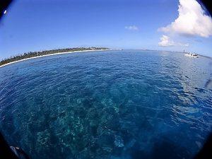 水納島ファンダイビング