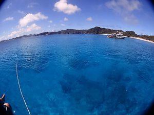 沖縄慶良間ファンダイビング