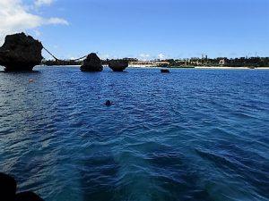 沖縄万座サンゴ植付け