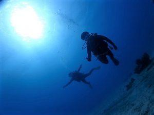 沖縄北部瀬底島ダイビング