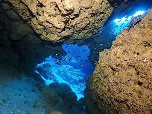 沖縄ダイビングチービシ諸島